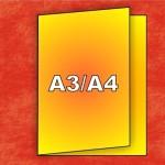 pusa34